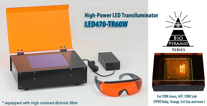 LED Transilluminator (Direct illumination type) for gel electrophoresis. Special dichroic filter eliminates unwanted background and produces sharp band images. Makes convenient system with Bio-Pyramid-Mini® and digital camera.