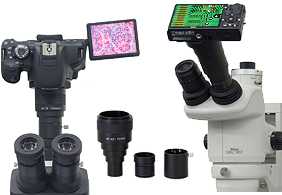 Microscope adapter for digital camera